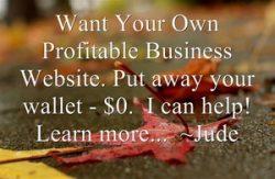 Build Your Own Profitable Website